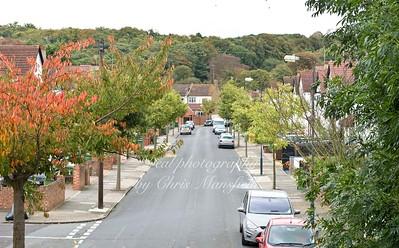 SE18 Bournewood road