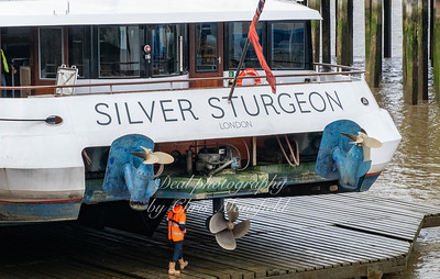 Feb' 17th 2020.  Silver Sturgeon on Ferry maintenance platform