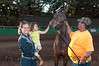 MOLOKAI STAMPEDE NOVEMBER 10-11 2012 : 14 galleries with 362 photos