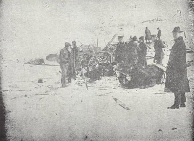 No one kept any record of animal casualties in the explosion. Hundreds of cats and dogs must have died but the biggest problem must have been the many hundreds of dead horses. In 1917, the majority of transport would still have been horse-drawn and animals as large as horses must have been very vulnerable, as per these dead horses seen here.