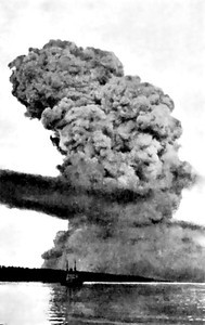 TheHalifax Explosion, taken about 20 seconds after the MONT BLANC exploded. She was carrying about 3500 tons of assorted explosives when she blew up. The explosion destroyed the ship, launching the remains of her hull nearly 1000 feet into the air and sending white-hot shards of iron raining down upon Halifax and Dartmouth. The barrel of one of the ship's guns landed approximately 3.5 miles north of the explosion site near Albro Lake in Dartmouth, while part of her anchor, weighing nearly 2 tons,  landed 2 miles south at Armdale. The resulting cloud of white smoke rose to over 20,000 feet. The shock wave from the blast travelled at nearly 23 times the speed of sound and was felt as far away as Cape Breton and Prince Edward Island. An area over 400 acres was completely destroyed by the explosion, while the harbour floor was momentarily exposed by the volume of water that vapourized. A tsunami was formed by water surging in to fill the void, which rose up as high as 60 feet above the harbour's high-water mark on the Halifax side.