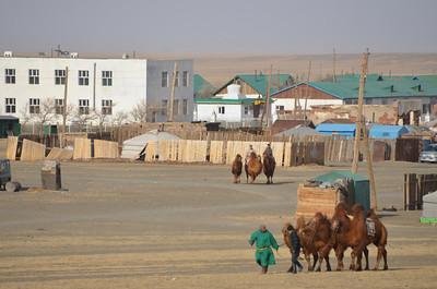 Bulgan Soum.  The small Gobi Desert town that host's the annual Thousand Camel Festival.