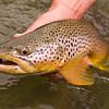 Smith River, Montana - Jim Klug Photos