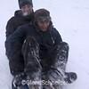 sled2211