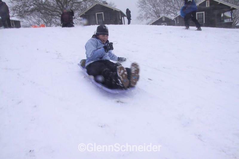 sled2227