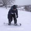 sled2225