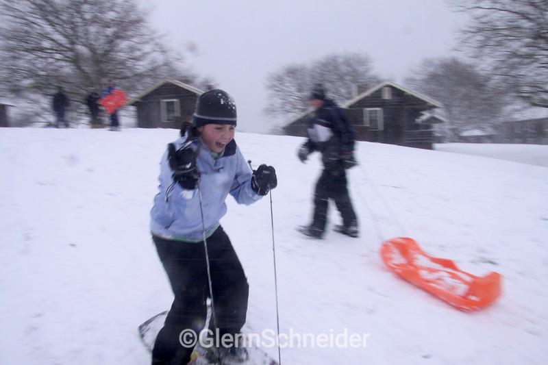 sled2214