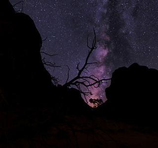 AMAZING NIGHT SKY