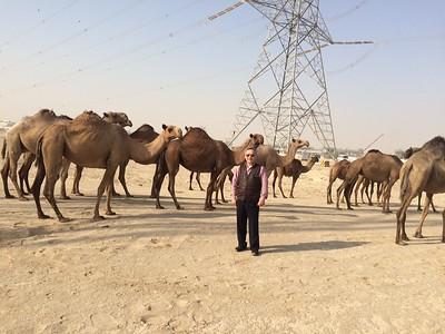 Nhị Anh, Kuwait