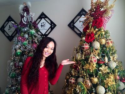 Trang hoàng  Giáng Sinh 2014