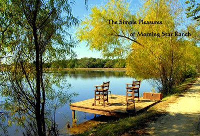 There are numerous picturesque fishing docks & sitting areas situated around this pristine  30acre Lake.