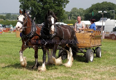 Steam Rally_029