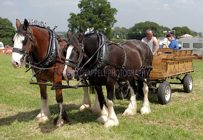 Steam Rally_050