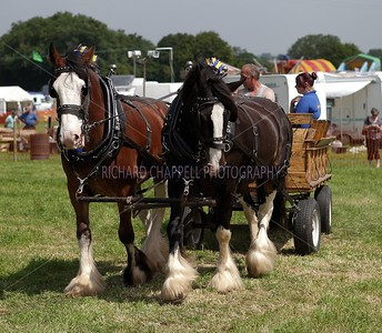 Steam Rally_037