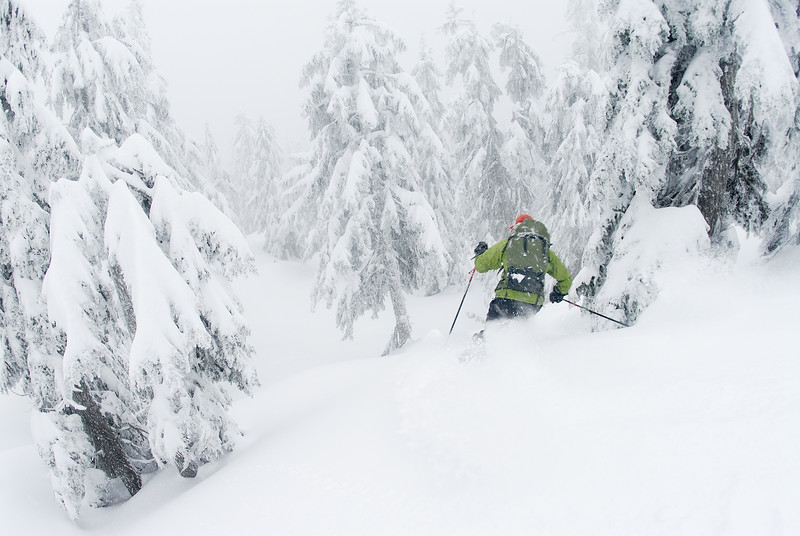 Backcountry skiing on Hollyburn Mountain. West Vancouver, British Columbia, Canada