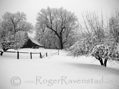 Motherlode Barn (horizontal) Image I.D. #:  M-08-009  Are you looking for more Black and White images? Look HERE for all Black and White work.