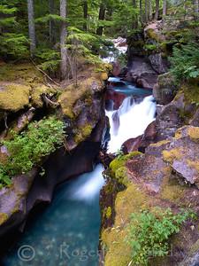 Avalanche Creek Image I.D. #:  M-08-012