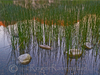 Harmonic Reflection Gull Lake Image I.D. #:  M-09-005