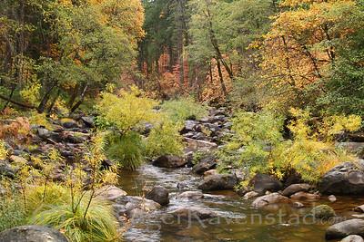 Fall at Southfork Image I.D. #:  M-06-001