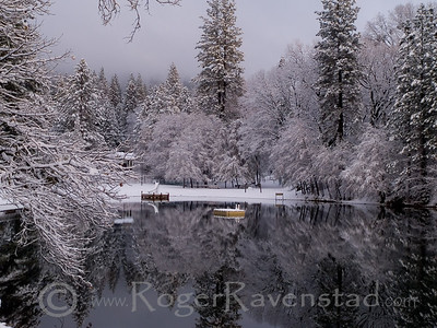 Winter at Brentwood Image I.D. #:  M-08-016