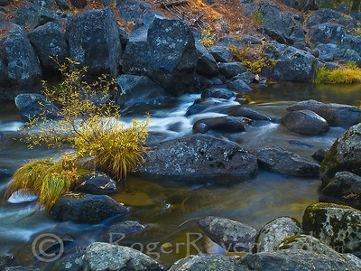 Fall Flow Image I.D. #:  M-09-###