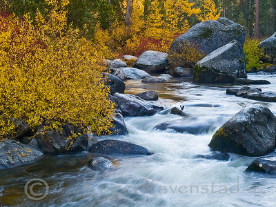 Rushing Color Image I.D. #:  M-09-###