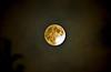 Moon 12-11-08