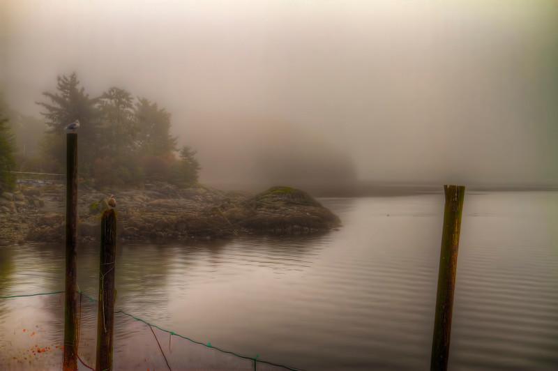 Foggy View 10-22-13