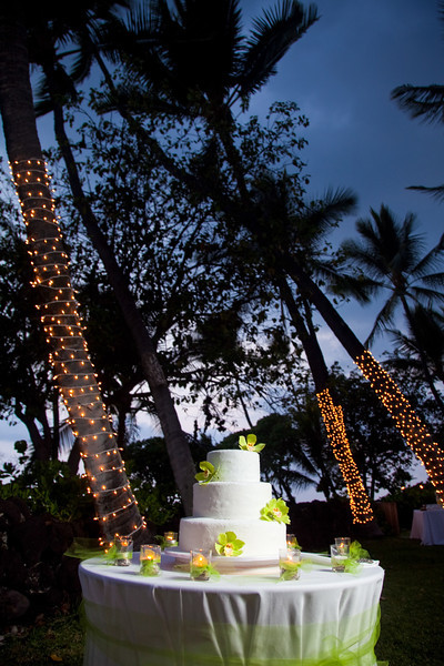 sara-kyle-wedding616
