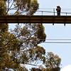 0016-110423_Gwen-Tom-Engagement-©8twenty8_Studios