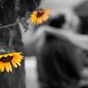 0005-100827_Jenn-Chris-Engagement-©8twenty8_Studios