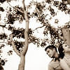 0012-110615-louell-michael-engagement-©8twenty8 Studios