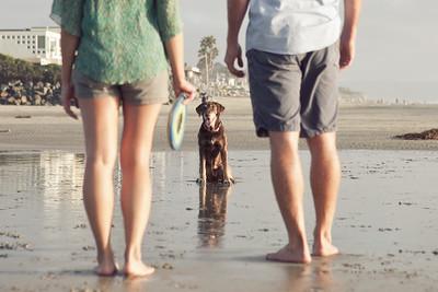0008-120918-lindsay-collin-engagement-©8twenty8-Studios