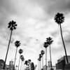 0042-130308-christine-louis-engagement-©8twenty8-Studios