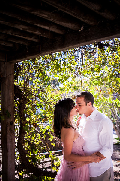 006-140330-olympia-jimmy-engagement-8twenty8 Studios