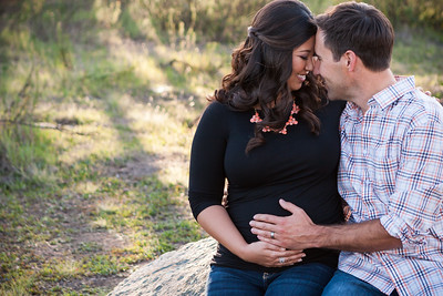 0002-140311-alicia-ryan-maternity-8twenty8-Studios