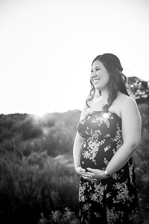0066-140311-alicia-ryan-maternity-8twenty8-Studios