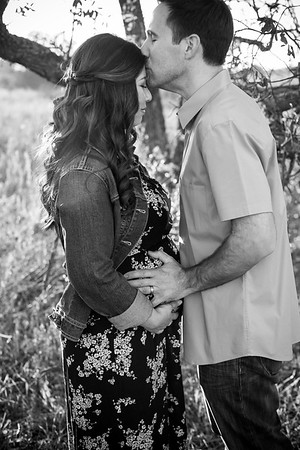 0042-140311-alicia-ryan-maternity-8twenty8-Studios