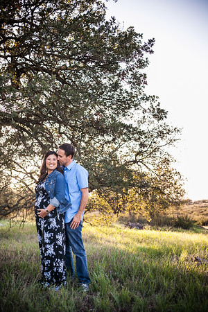 0044-140311-alicia-ryan-maternity-8twenty8-Studios