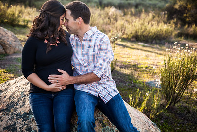 0032-140311-alicia-ryan-maternity-8twenty8-Studios