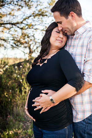 0023-140311-alicia-ryan-maternity-8twenty8-Studios