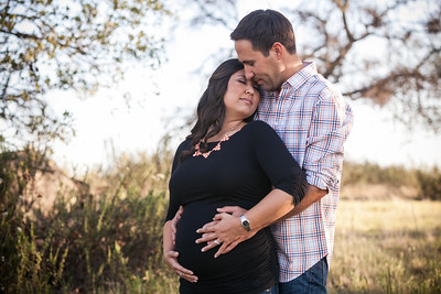 0030-140311-alicia-ryan-maternity-8twenty8-Studios