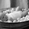 0005-110811_breckin-davis-baby-©8twenty8_Studios