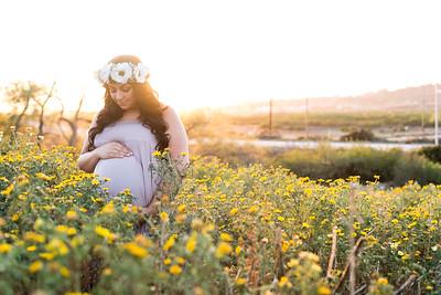 0041-140407-shiva-dan-maternity-8twenty8-Studios