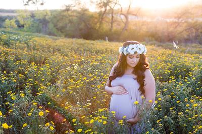 0038-140407-shiva-dan-maternity-8twenty8-Studios
