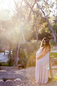 0013-140407-shiva-dan-maternity-8twenty8-Studios
