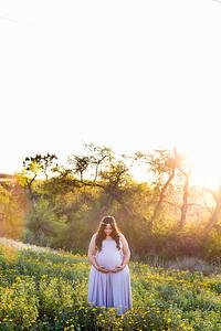 0030-140407-shiva-dan-maternity-8twenty8-Studios