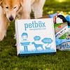 0002-130529-petbox-product-©8twenty8-Studios
