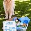 0004-130529-petbox-product-©8twenty8-Studios