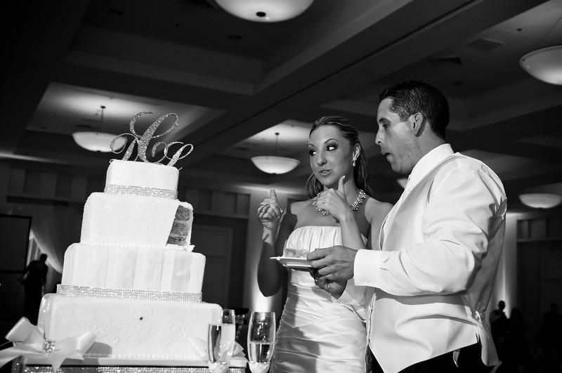 0744-110709-Lisa-Daniel-Wedding